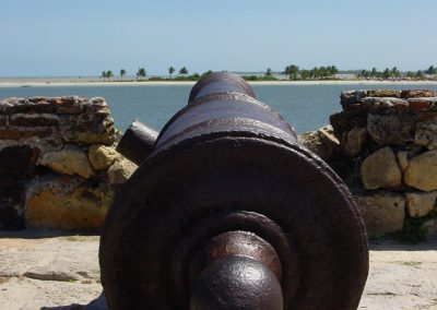 Fort Orange Cannons