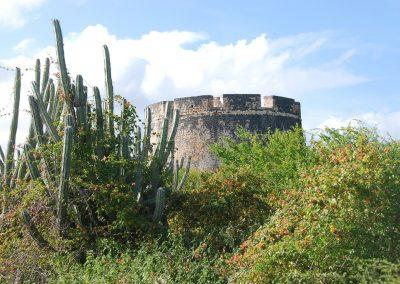 Fort Beekenburg achter de tropische begroeiing