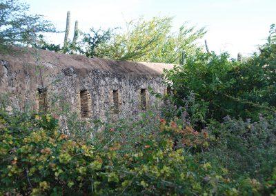 Fort Beekenburg vestingswal 2 foto Willy Metz