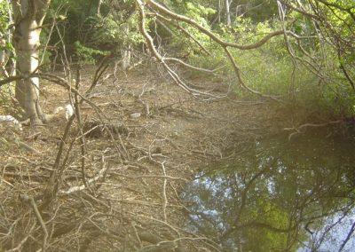 Jan Thiel Pos di orashon met water nu pos di pi - waterkuil van indianen
