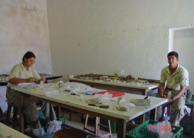 Nora and Ubiritan cataloguing