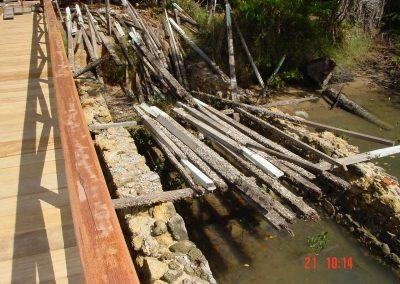 Nova Ponte e velha madeira